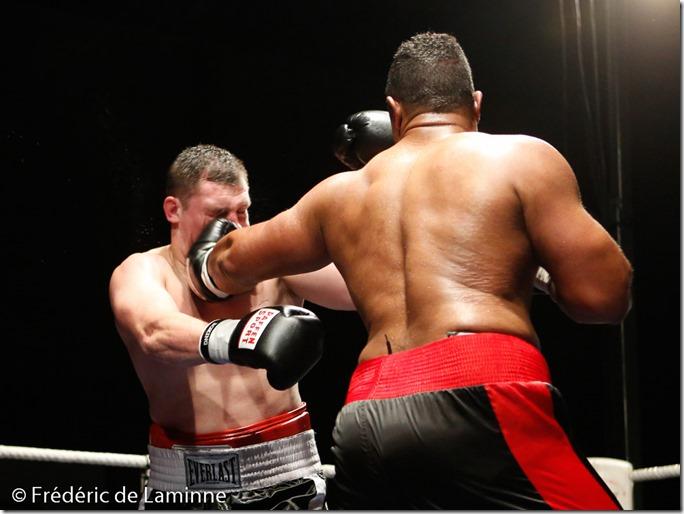 Pros Hervé Hubeaux (short noir et rouge) - Hrvoje Kisicek lors du Gala de boxe de Seilles qui s'est déroulé à Seilles - Andenne (Hall sportif) le 22/11 /2014.